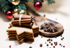 Ginger cookies and spices Royalty Free Stock Image