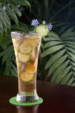 Ginger Cucumber Iced Tea Royalty Free Stock Images