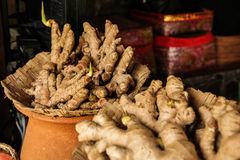 Ginger Decorated nella ciotola Fotografie Stock Libere da Diritti