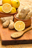 Ginger is a healthy and medicinal spice Royalty Free Stock Images