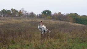 Ginger horsewoman in wedding dress riding galloping horse along field