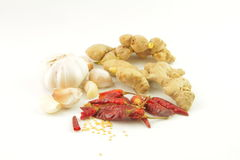 Ginger , hot pepper and garlic Stock Photography
