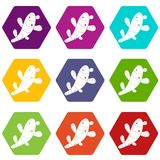 Ginger icon set color hexahedron Royalty Free Stock Photos