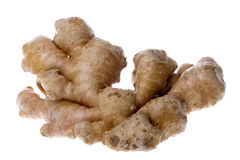 Ginger Isolated Royalty Free Stock Images
