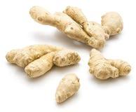 ginger isolated root Στοκ Φωτογραφίες