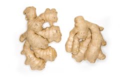 ginger isolated root Στοκ εικόνες με δικαίωμα ελεύθερης χρήσης