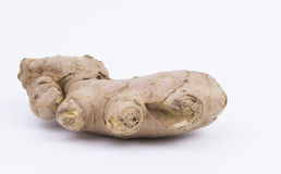 Ginger isolated. Ginger root isolated on white background stock image