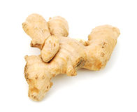 Ginger isolated Royalty Free Stock Photo
