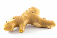 Ginger, Isolated Royalty Free Stock Photo