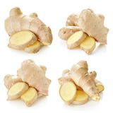 Ginger Isolated on a white. Ginger collection isolated on white background Clipping Path royalty free stock photo