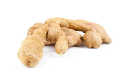 Root ginger isolated on a white studio background Royalty Free Stock Image