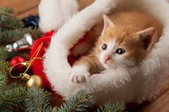 Ginger kitten in santa hat against the background of a Christmas Stock Photo