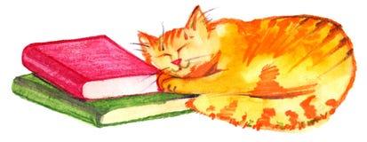 Ginger kitten sleeping on books. Watercolor illustration