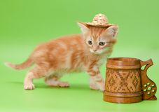 Ginger kitten in straw and carved mug Stock Image