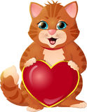 Ginger kitten on a white background. Ginger kitten congratulation Valentine`s Day Stock Photo