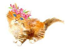 Ginger kitty with a flower wreath.Watercolor hand drawn illustration. Stock Photo