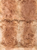 Ginger leathers of rabbits, four Royalty Free Stock Images