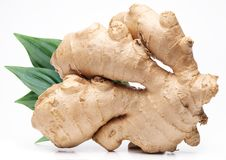 Ginger with leaves. Royalty Free Stock Photos