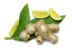 Ginger and Lemon Stock Photo