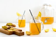 Ginger and lemon combucha detox drink in two jars royalty free stock photography