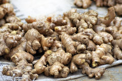 Ginger in the market Stock Photography
