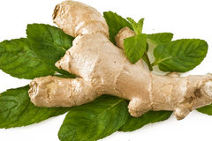 Ginger with mint Stock Photos