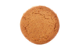 Ginger nut biscuit Royalty Free Stock Photo
