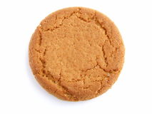 Ginger nut biscuit. On white background close up Stock Photography