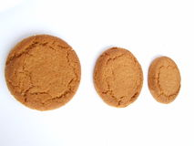 Ginger nut biscuits. 3 ginger nut biscuits in a line Royalty Free Stock Image