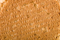 Ginger nut biscuits background, close-up on back side. Stock Images