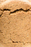 Ginger nut biscuits background, close-up on front side. Royalty Free Stock Images