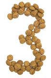 Ginger Nuts Number Three Royalty Free Stock Photo