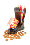 Ginger nuts and presents in boot Stock Image