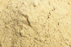 Ginger powder Stock Image