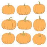 Ginger Pumpkins on a White Background. Beautiful pumpkins for holiday on a white background Stock Photo