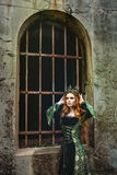 Ginger queen near the castle Stock Photography