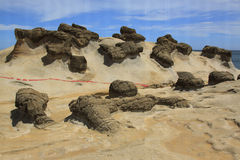 Ginger rock formation,Yehliu geopark Royalty Free Stock Images