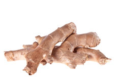 Ginger root,. On a white background Stock Photos