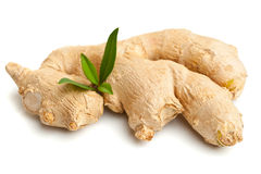 Ginger root Stock Photography