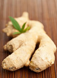 Ginger root. Whole fresh ginger root, a traditional asian and chinese healthy food ingredient and medicine on brown bamboo mat Stock Photo
