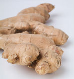 Ginger root on the background Stock Images