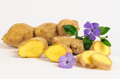 Ginger root. And cisterns from the root of a white background royalty free stock photography