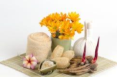 Ginger Root esfrega e a ajuda do mel reduz a inflamação e mata as bactérias ou os fungos na pele Pele jovem da restauração da aju Fotos de Stock Royalty Free