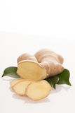 Ginger root with green leaves isolated over white. Royalty Free Stock Photo