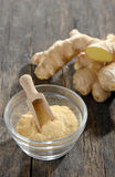 Ginger root and ground ginger spice Stock Images