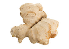 Ginger root, isolated Stock Photography