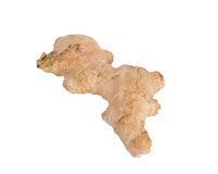 Ginger root isolated. On white background Royalty Free Stock Photography