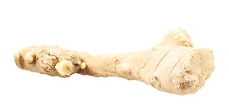 Ginger root isolated Stock Image
