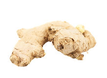 Ginger root isolated Royalty Free Stock Photos