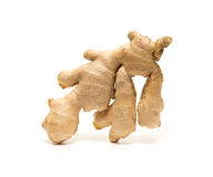 Ginger root isolated on white background Royalty Free Stock Photos
